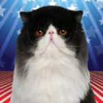 7 Animals Who Ran for Political Office