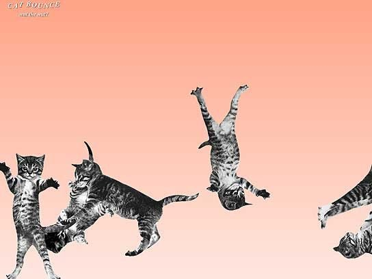 "If you like cats, try: Cat Bounce (<a href=""http://www.cat-bounce.com"">cat-bounce.com</a>)"