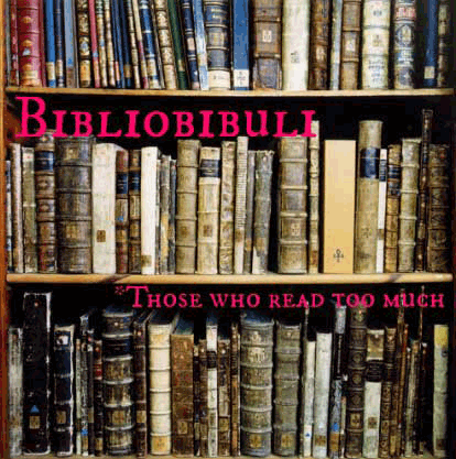 bibliobibuli weird word bookshelves