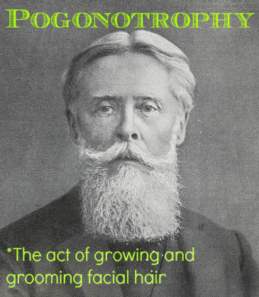 pogonotrophy weird word beard