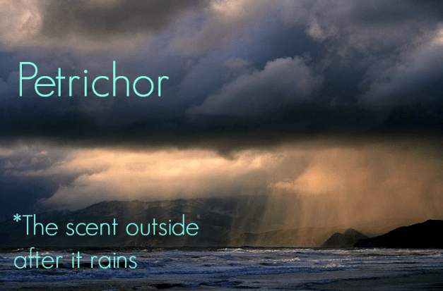 petrichor weird word ocean storm