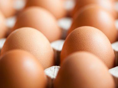 Eat organic eggs