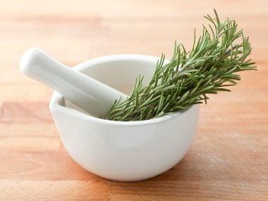 Fight Dandruff Flakes: Rosemary Leaves
