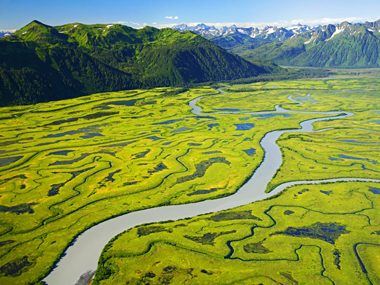 Alaska: Verdant Copper River delta in the Chugach National Forest