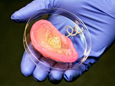An Ear in a Petri Dish