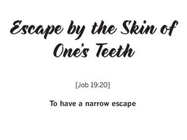 """By The Skin Of My Teeth"""