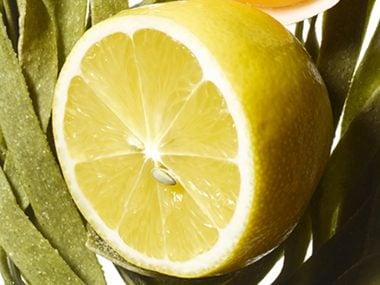 food trends lemons