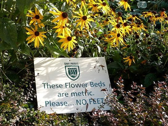 funny signs metric flowers