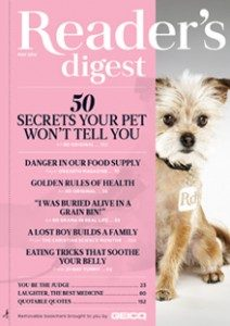 may cover dog