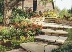 house-garden-ground-cover