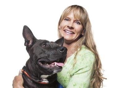 heroes woman pitbull