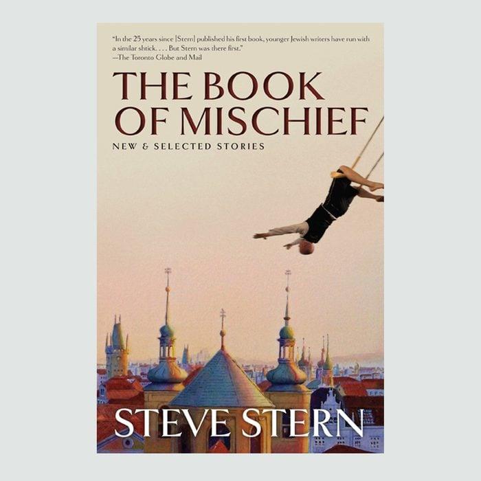 Steve Stern author