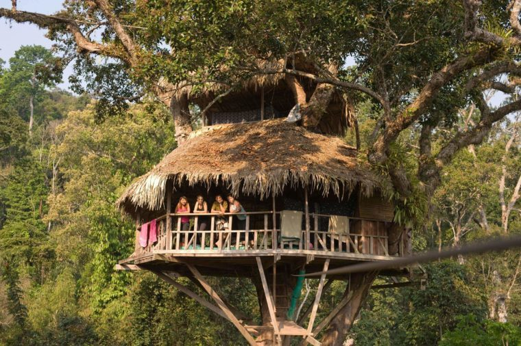 The Highest Tree Houses In The World Belong To The Gibbon Experience, Which  Draws Eco Tourists To Laos With The Promise Of Waking Up Gibbons And  Zooming ...