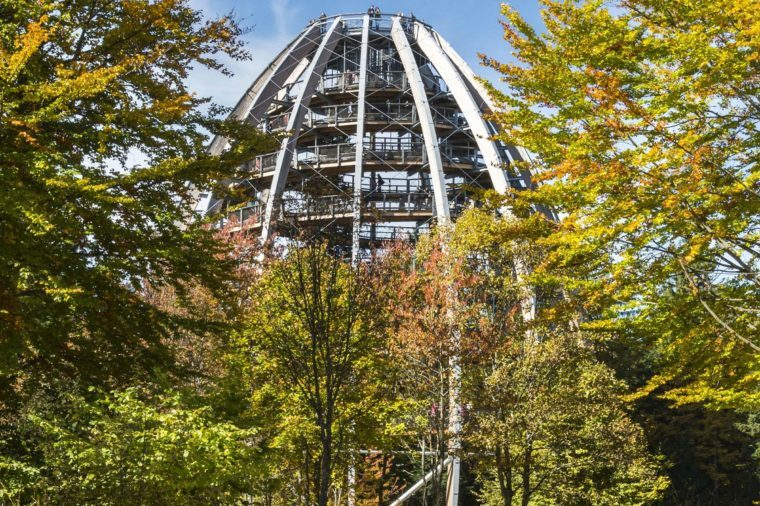 Less U201chouseu201d Than U201cpath,u201d Baumwipfelpfad In Germanyu0027s Bavarian Forest  National Park Translates To U201ctreetop Walk.u201d Visitors Can Climb The  4,300 Foot Path As ...