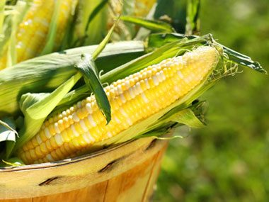 Found a worm in your corn? Don't freak out.