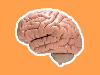 healthy carrots improve memory