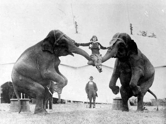 Vintage Circus Photos Capture Life Under the Big Tent ...