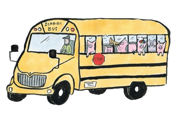 illustration of a school bus with pigs as passengers