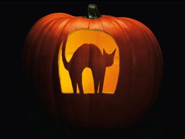 Pumpkin carving patterns free ideas from 27 stencils for Cat pumpkin designs to carve
