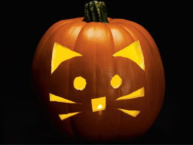 Pumpkin Carving Patterns: Free Ideas from 27 Stencils | Reader's ... : Easy Pumpkin Decorating Ideas For Toddlers For Kids