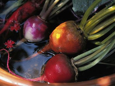 Health Risk: Beets discolor your stool