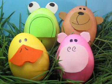 Zoo-egg-ology