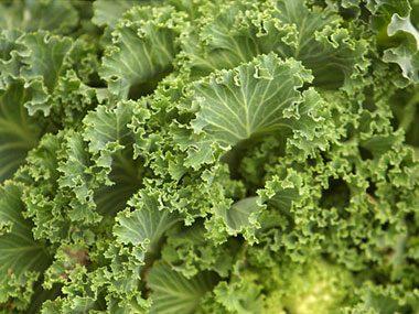 5) Kale