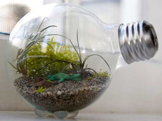 What To Do With Old Light Bulbs 5 Fun Crafts Reader S