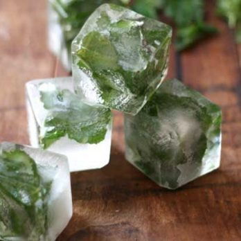 These 7 Genius Flavored Ice Cubes Will Change Your Drinks Forever