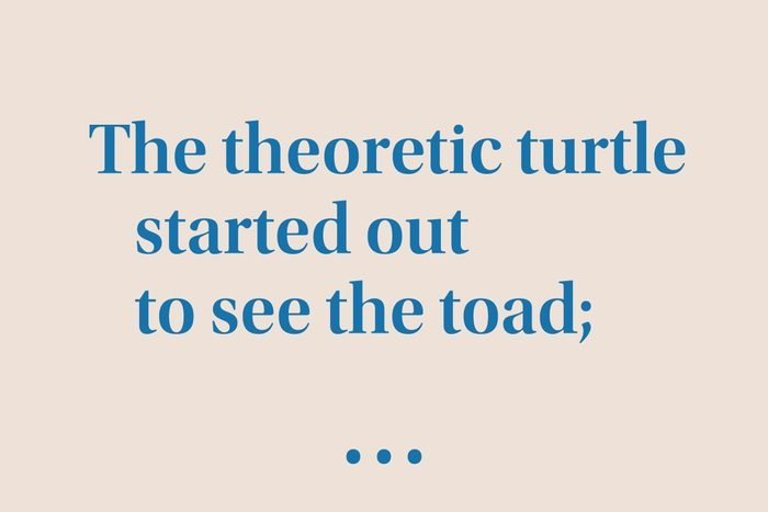 """""""The theoretic turtle started out to see the toad…"""""""