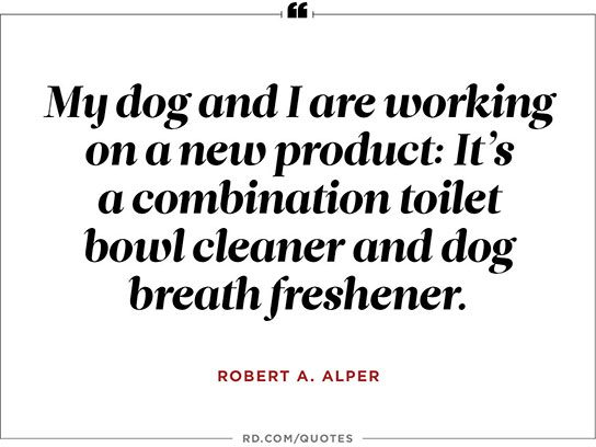 8 Funny One Liners About Dogs Readers Digest