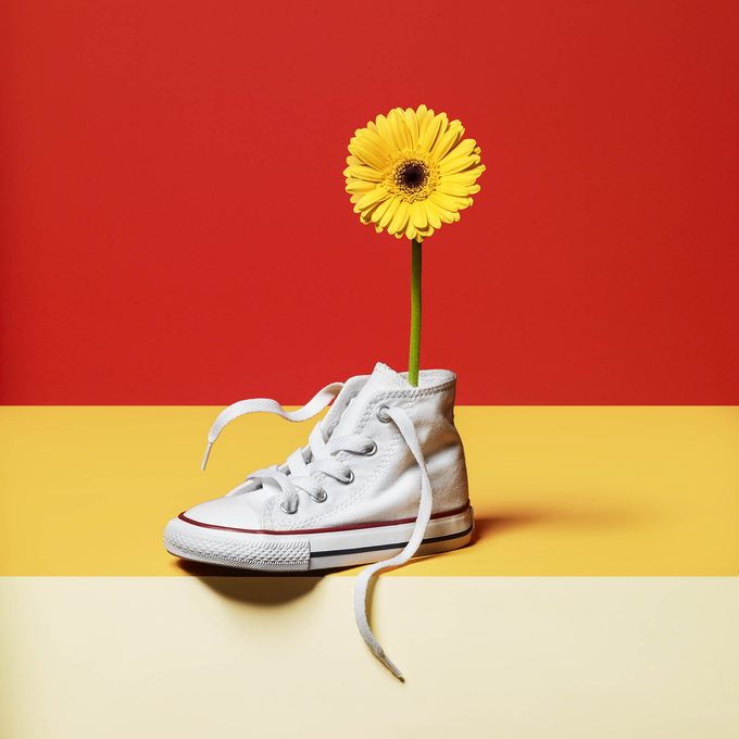 flower in a sneaker on red and yellow background