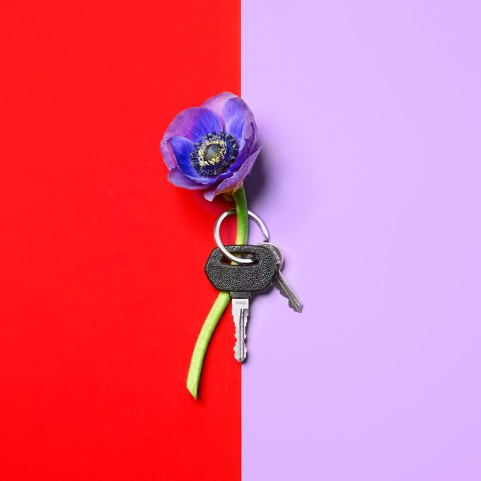 a flower and a car key on a bright background