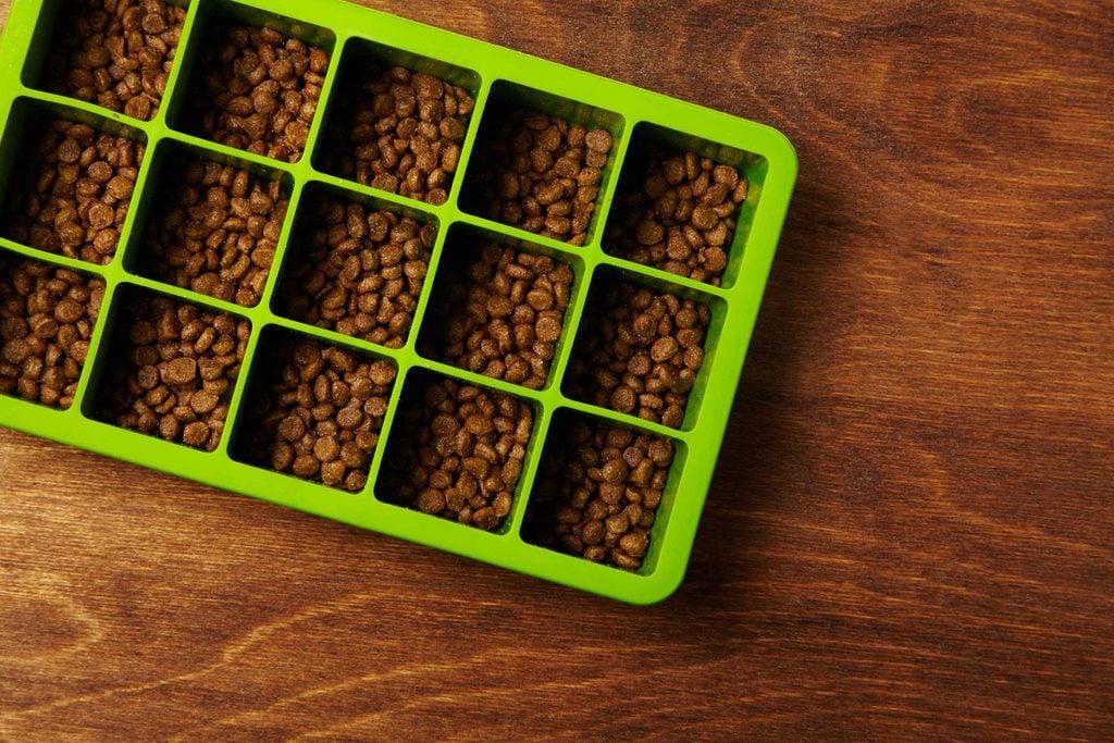 ice cube trays dog food
