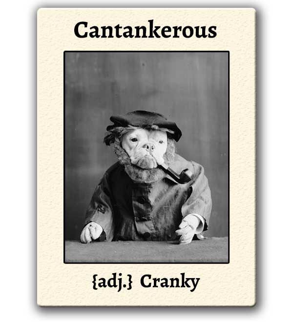 funny-words-cantankerous-definition