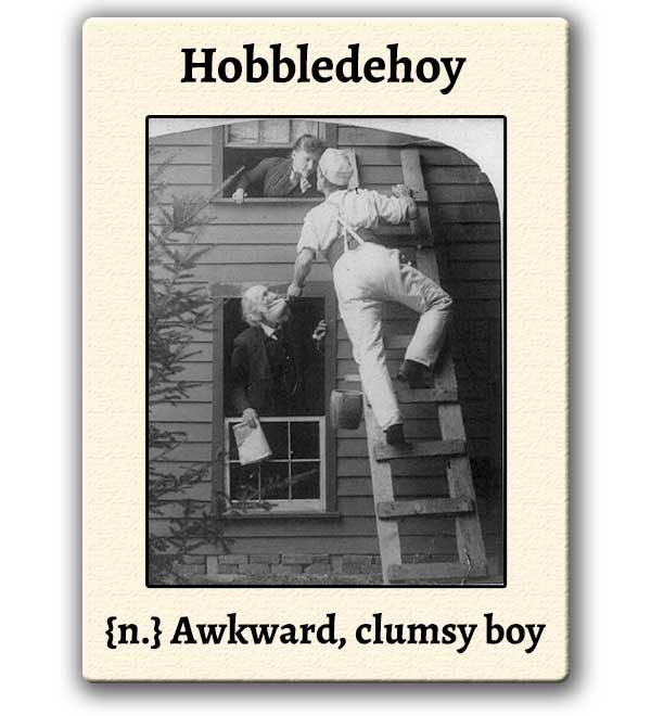 funny-words-hobbledehoy-definition