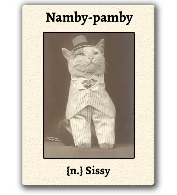 funny-words-namby-pamby-definition