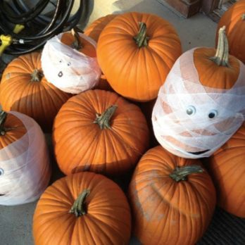 20 Simple (and Pretty!) No-Carve Pumpkin Decorating Ideas Anyone Can Try