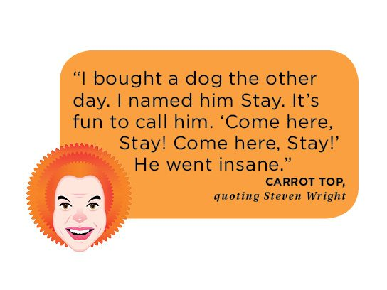 funny people slideshow carrot top