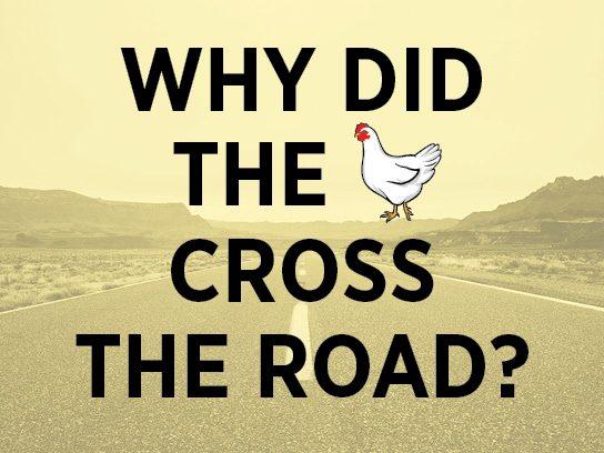 joke chicken crossing road