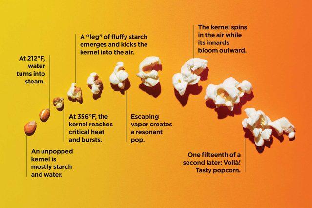 who knew popcorn