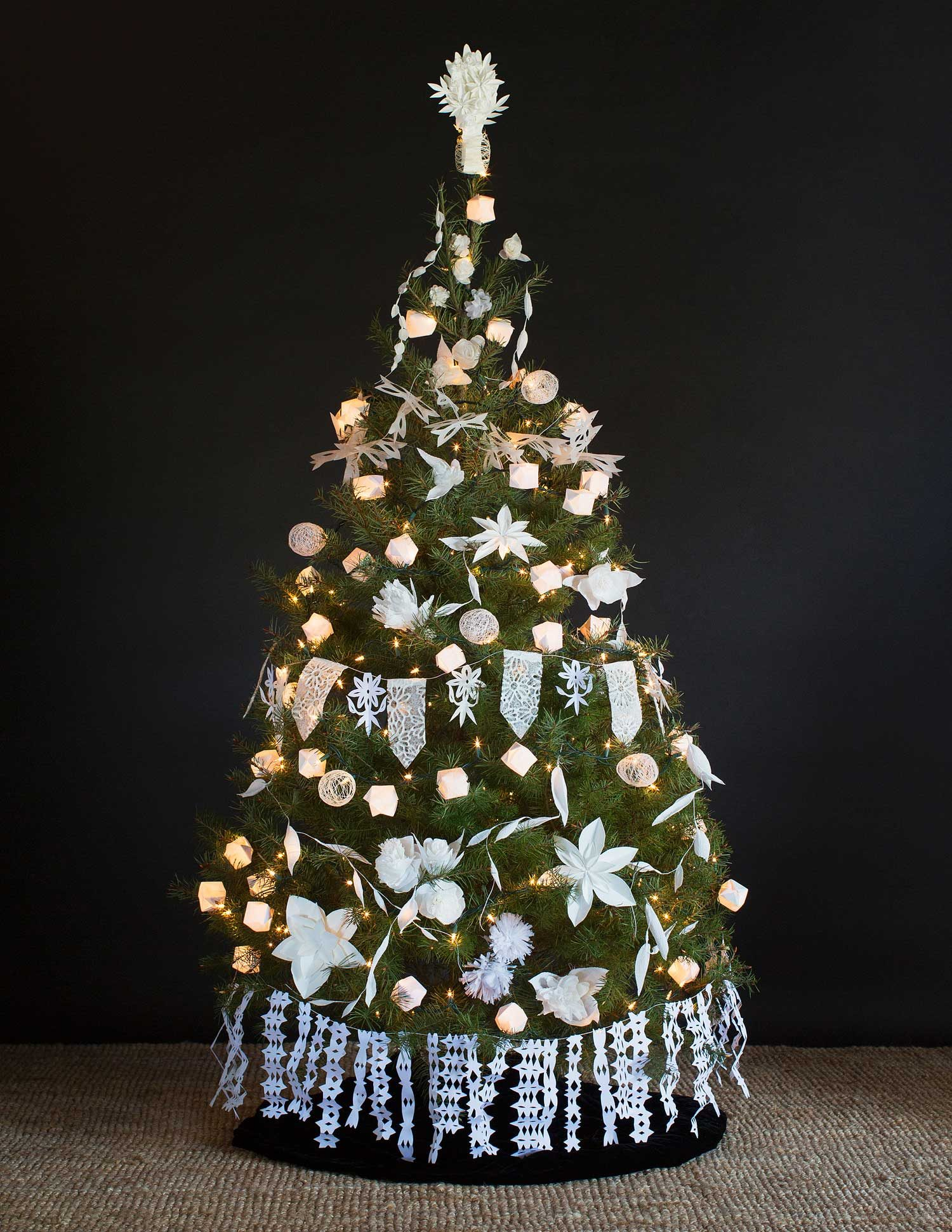 paperwhite tree - New Christmas Decorations