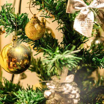 The Year My Mother Saved Christmas—With a Sad, Threadbare Tree