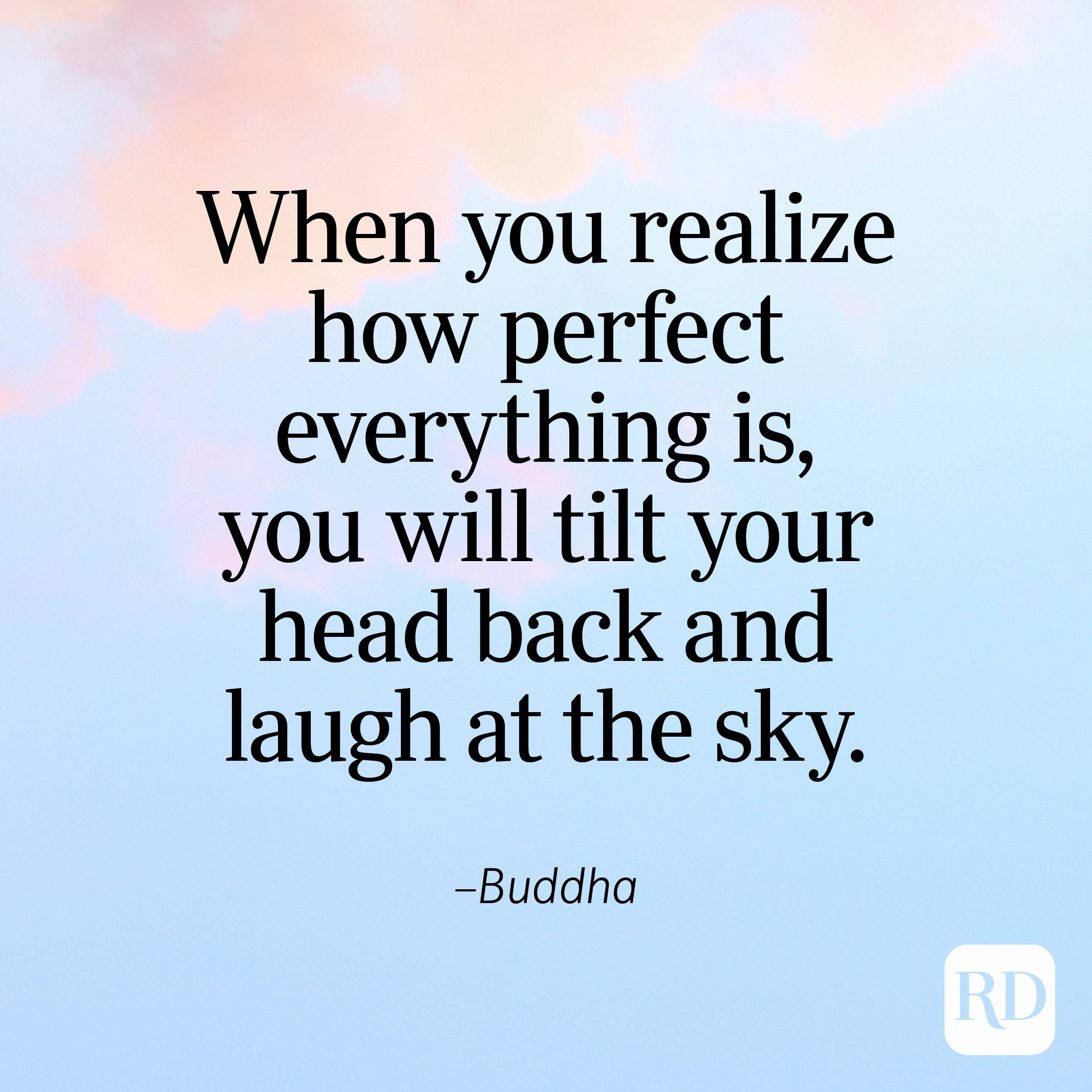 """""""When you realize how perfect everything is, you will tilt your head back and laugh at the sky."""" —Buddha"""