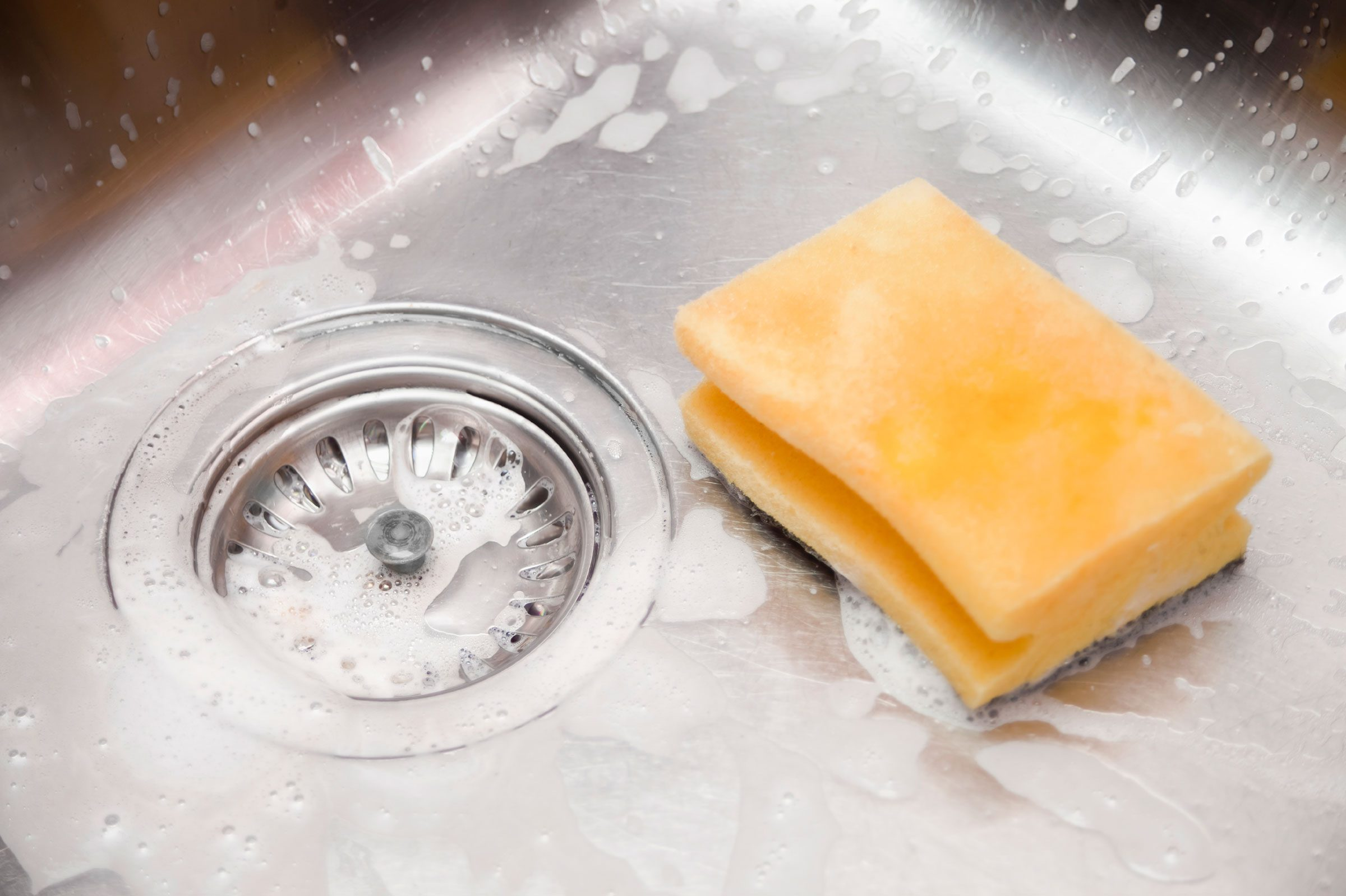 how to clean germ kitchen items sponge