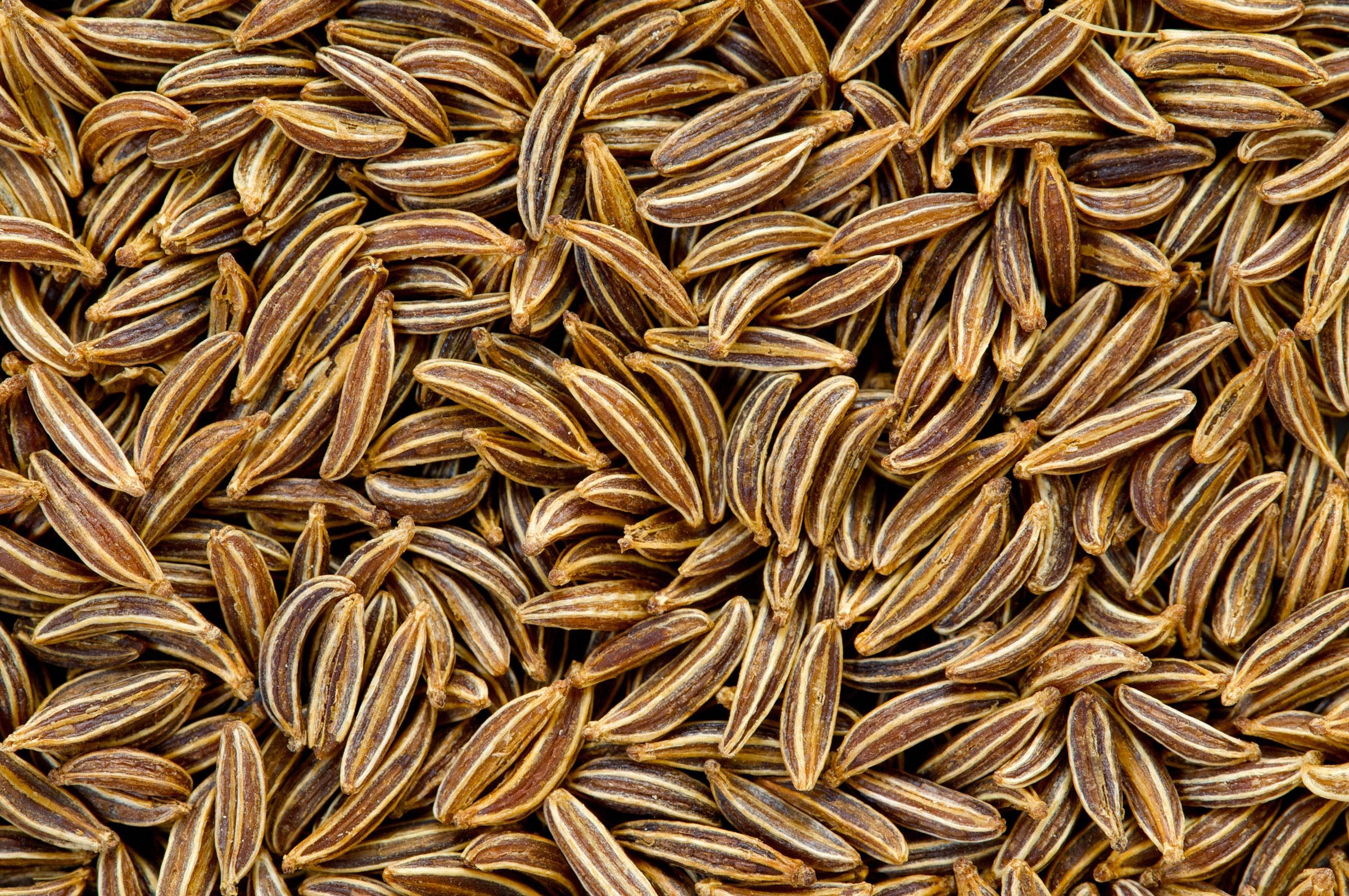 Watch How to Use Caraway Seeds video