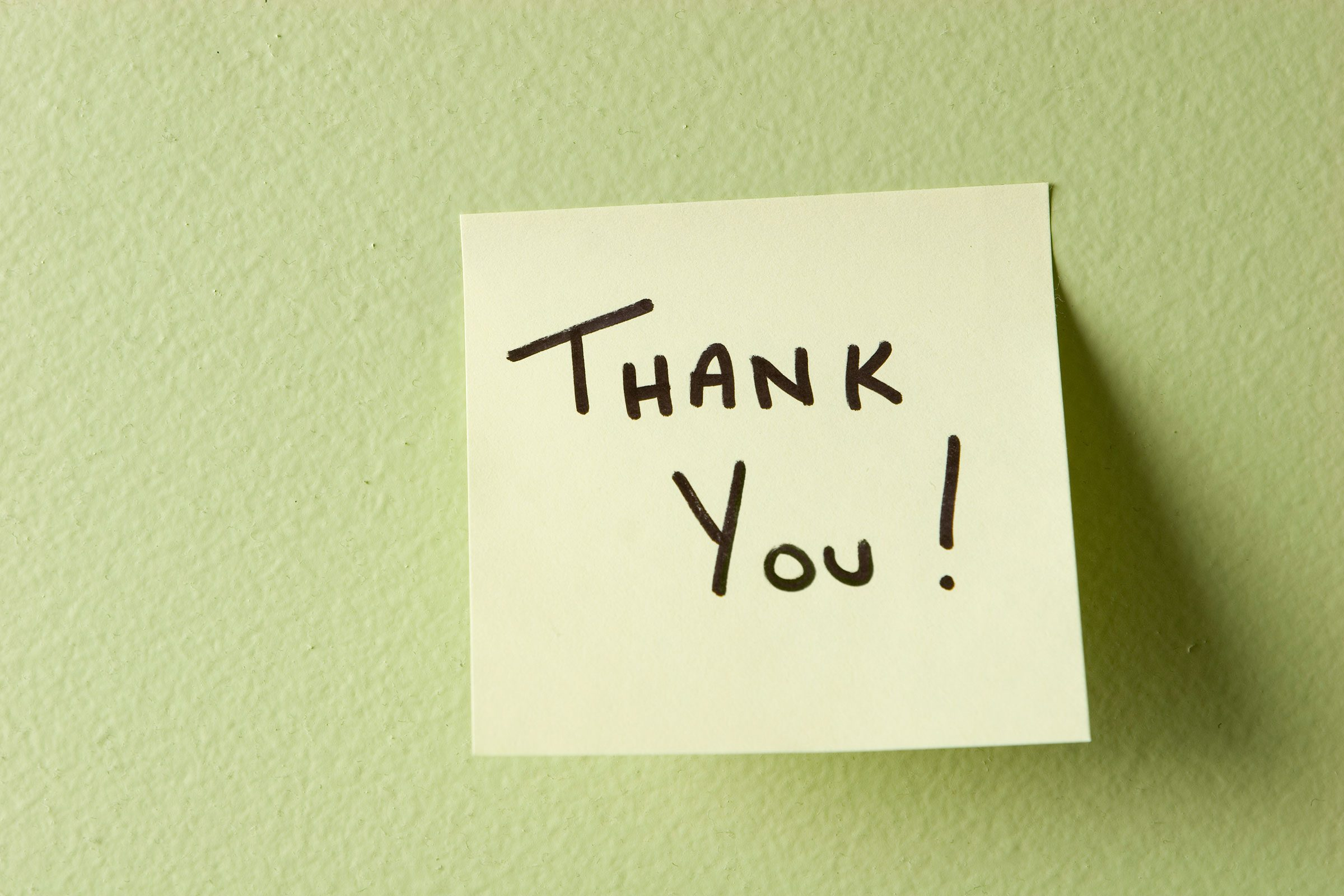 Thank You House: What Your Housecleaner Won't Tell You