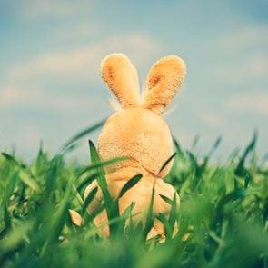 6 easter myths easter bunny