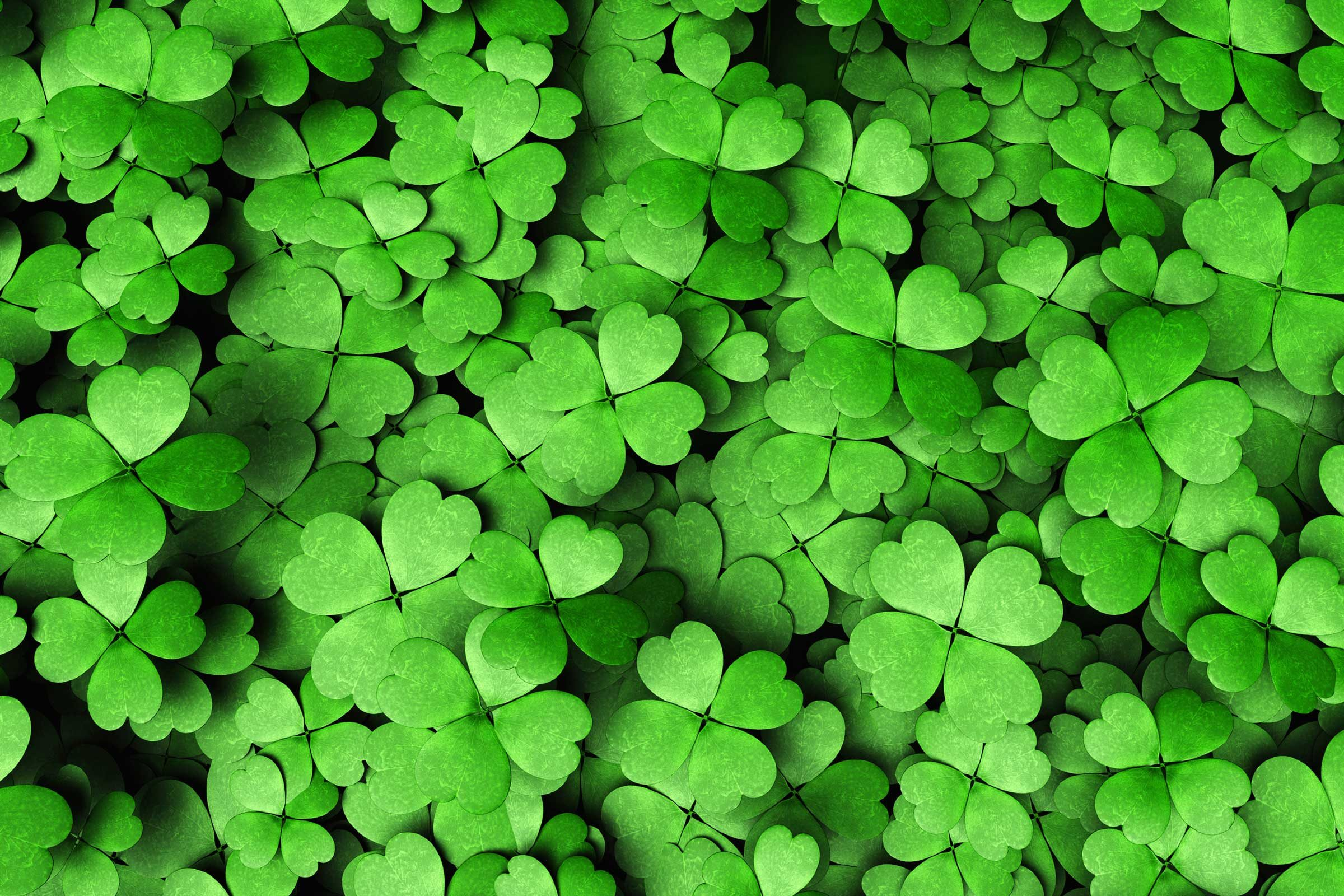 false st patricks day facts green
