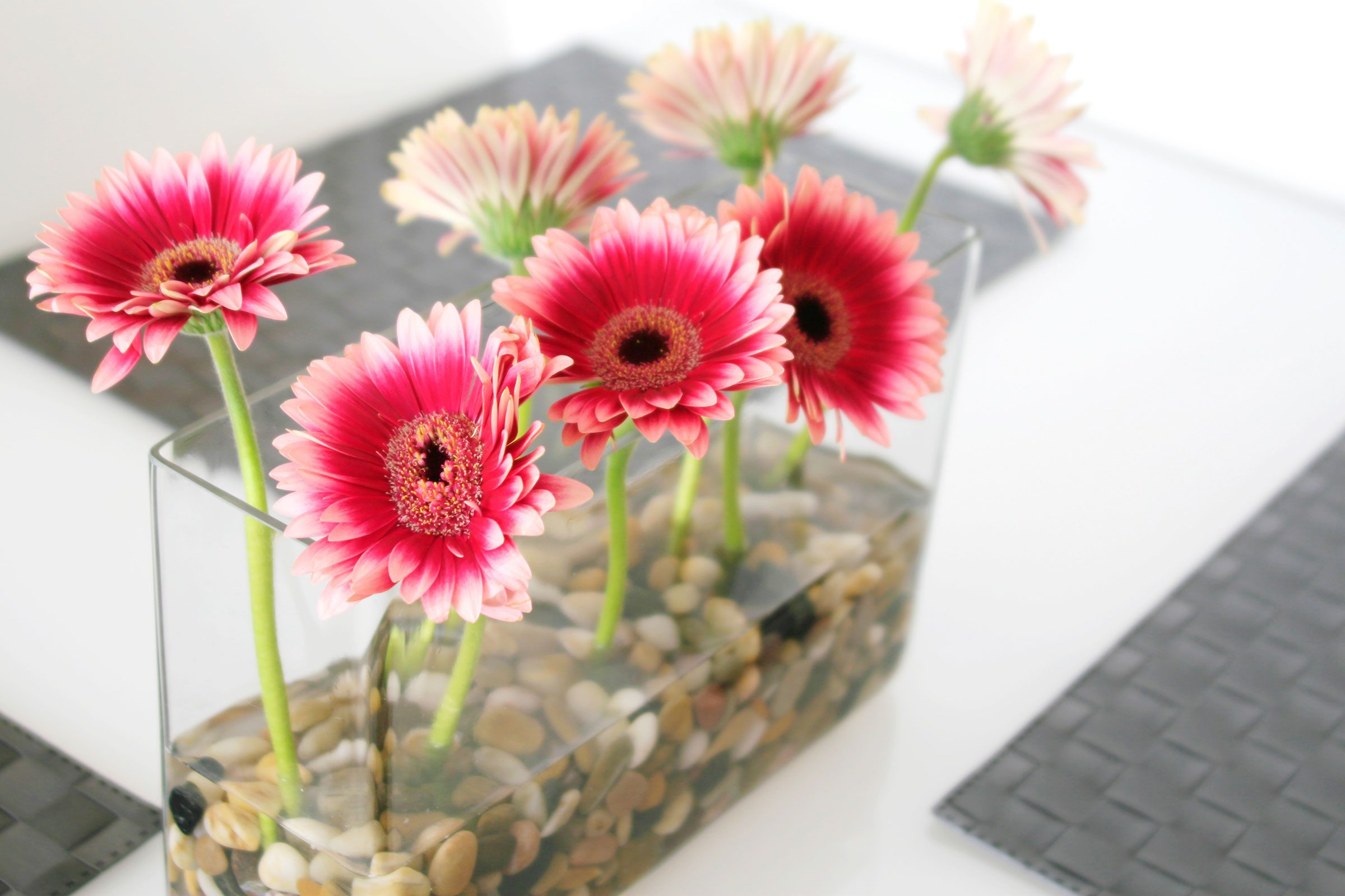 Easy cheap flower arrangements upgrade supermarket flowers fill a vase with pebbles izmirmasajfo
